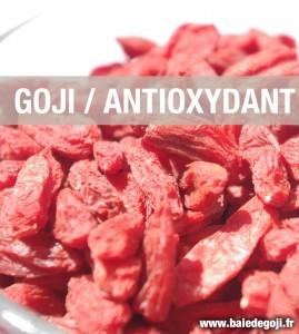 Le goji, un antioxydant