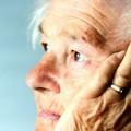 Baie de goji et la maladie d'Alzheimer
