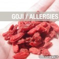 Le goji contre les allergies