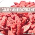 Le grand pouvoir antioxydant de la baie de goji